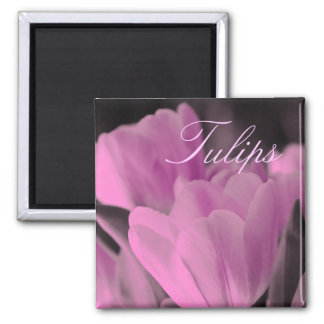 Muted Pink Tulips Magnet