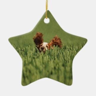 Mutley Christmas Tree Ornament