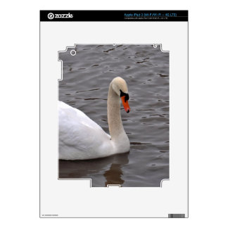 Mutre Swan on a Grey Lake Skins For iPad 3