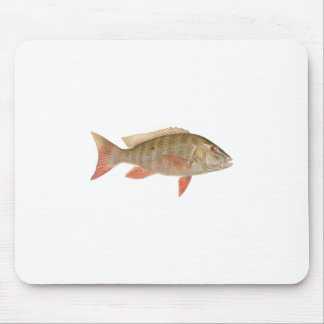 Mutton Snapper Illustration Mouse Pad