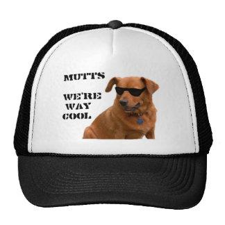 Mutts, We're Way Cool Trucker Hat