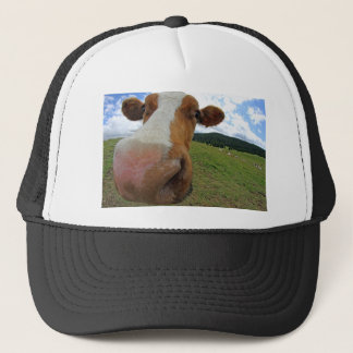 Muzzle of cow trucker hat