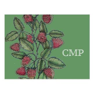MV Raspberry Bramble Postcard