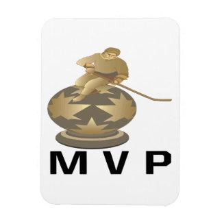 MVP IMANES RECTANGULARES