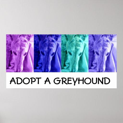 Mx4 Adopt a Greyhound Poster