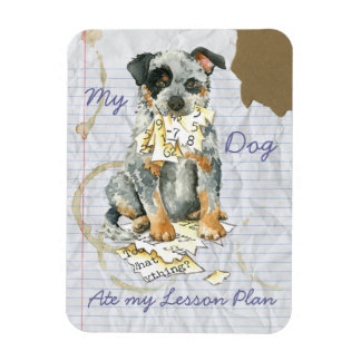 My ACD Ate My Lesson Plan Magnet