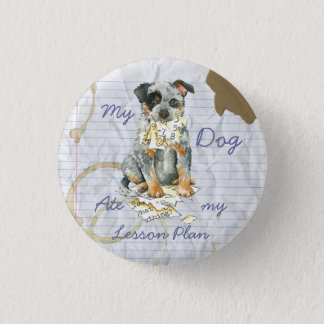 My ACD Ate My Lesson Plan Pinback Button