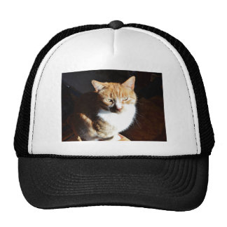 My Affectionate Look Nutmeg. Hats