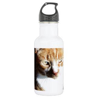 My Affectionate Look Nutmeg. Stainless Steel Water Bottle