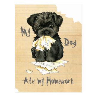 My Affenpinscher Ate My Homework Postcard