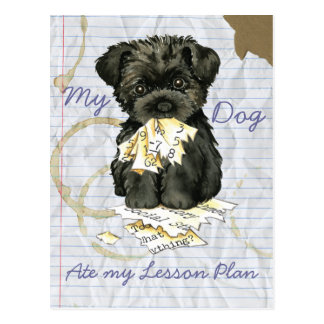 My Affenpinscher Ate My Lesson Plan Post Cards