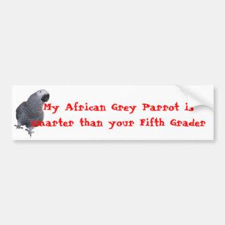 My African Grey Parrot... Bumper Sticker