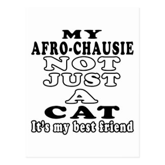 My Afro-chausie not just a cat Postcard
