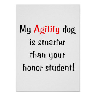 My Agility Dog is Smarter Poster