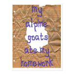 My Alpine Goats Ate My Homework Post Cards