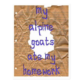 My Alpine Goats Ate My Homework Postcard