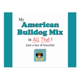 My American Bulldog Mix is All That! Postcard