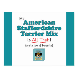 My American Staffordshire Terrier Mix is All That! Postcard