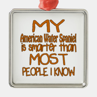 MY American Water Spaniel IS SMARTER THAN MOST PEO Metal Ornament