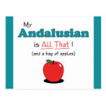My Andalusian is All That! Funny Horse Post Card
