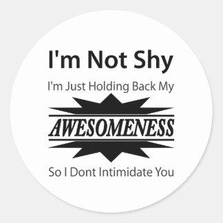 My Awesomeness! Classic Round Sticker