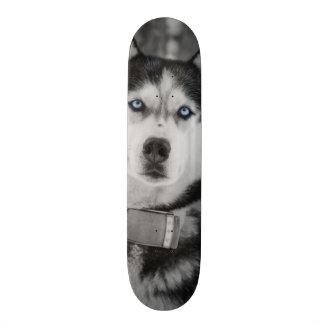 My Baby Blue Eyes Skateboard Deck