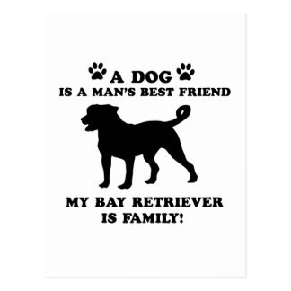 My BAY RETRIEVER family, your dog just a best frie Postcard