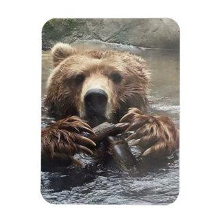 My Bear Magnet