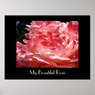 My Beautiful Rose art prints Pink Roses Love Print
