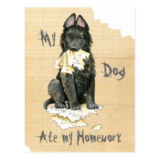 My Belgian Sheepdog Ate My Homework Postcard