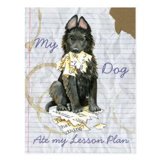 My Belgian Sheepdog Ate My Lesson Plan Postcard