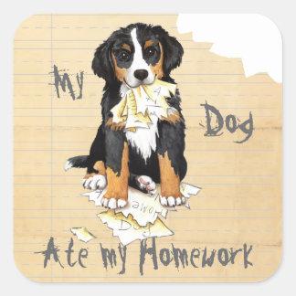 My Berner Ate My Homework Square Sticker