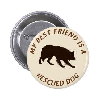 My Best Friend (Border Collie) Pinback Button