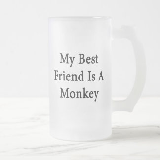 My Best Friend Is A Monkey Frosted Glass Beer Mug