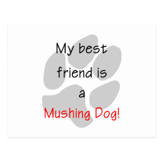 My Best Friend is a Mushing Dog Postcard