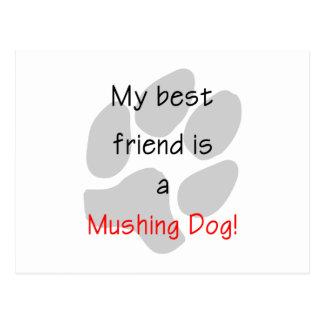 My Best Friend is a Mushing Dog Postcard
