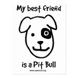 My best friend is a Pit bull Postcards