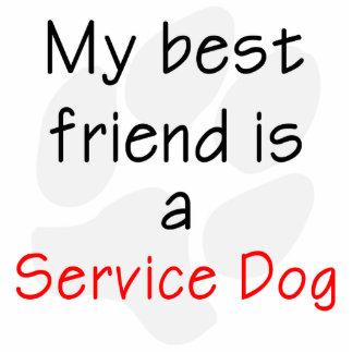 My Best Friend is a Service Dog Statuette