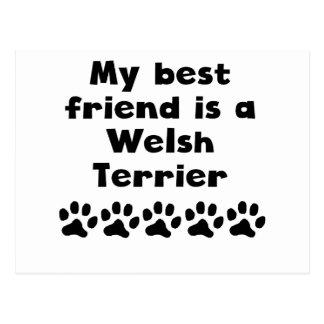My Best Friend Is A Welsh Terrier Postcards