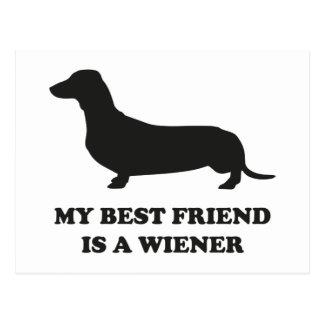 My Best Friend Is A Wiener Postcard