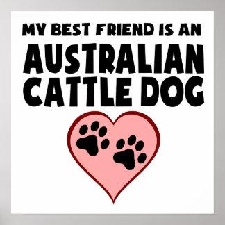 My Best Friend Is An Australian Cattle Dog Poster