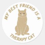 My Best Friend (Therapy Cat) Classic Round Sticker