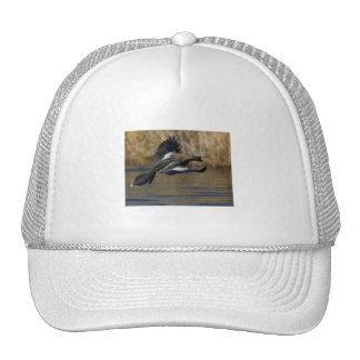 My Best Side Mesh Hat