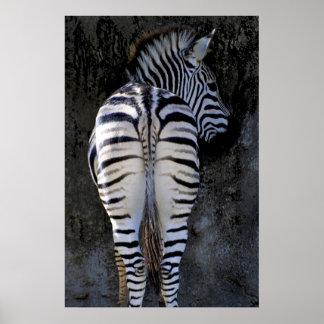 My best side - Zebra Poster