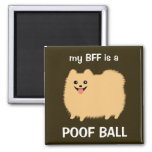 My BFF is a Pomeranian Poof Ball - Fun Pom Design 2 Inch Square Magnet