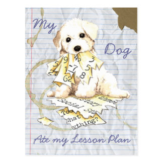 My Bichon Frise Ate My Lesson Plan Post Cards