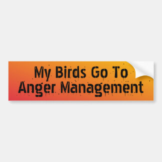 My Birds go to anger management Bumper Sticker