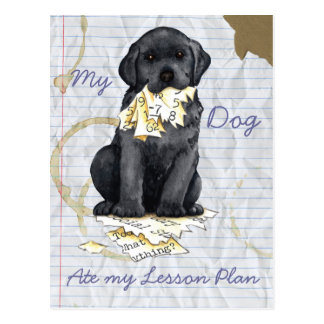 My Black Lab Ate My Lesson Plan Postcards