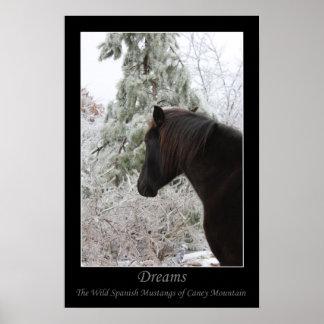My Black Stallion poster