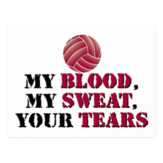 My blood, my sweat, your tears - Volleyball Postcard